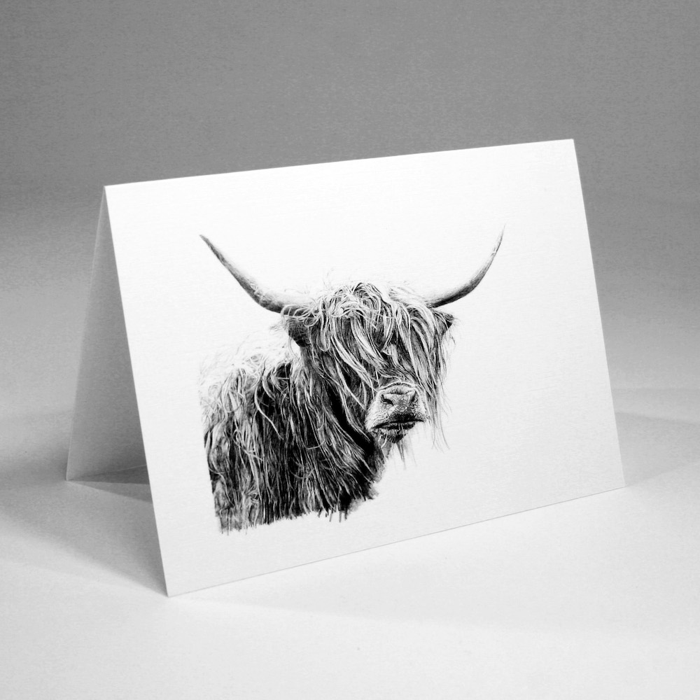 Highland Cow Greetings Cards