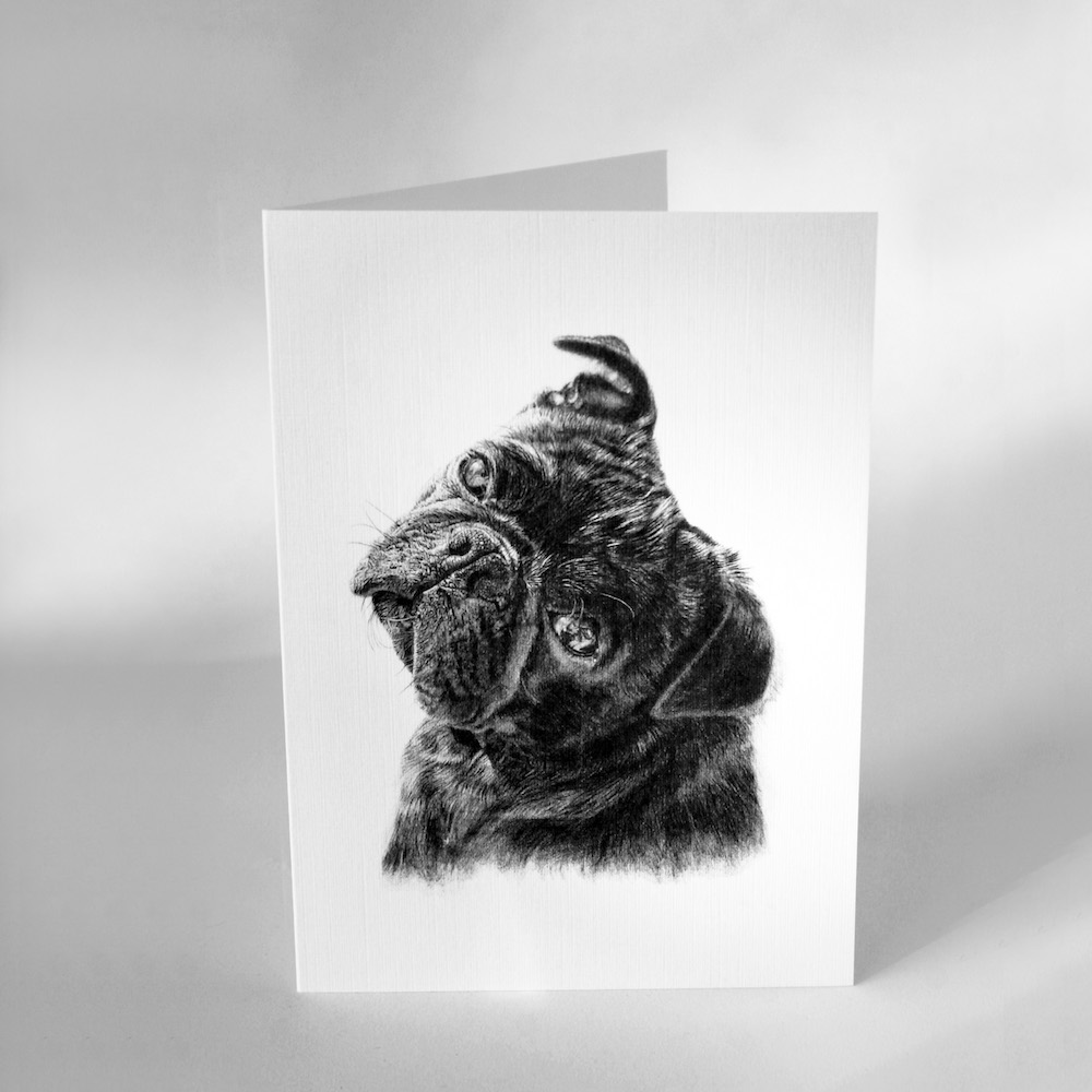 Pug Greetings Cards